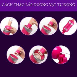 duong-vat-gia-tu-dong-thut-ngoay 04