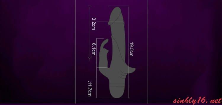 Kích thước của dương vật MS28G
