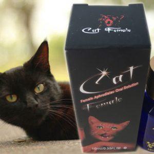 Thuốc kích dục mèo đỏ tốt nhất hiện nay